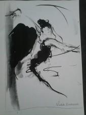 la calligraphe de l'air